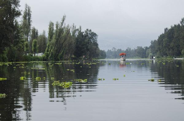 Lo que necesitas saber para reservar tu trajinera en Xochimilco