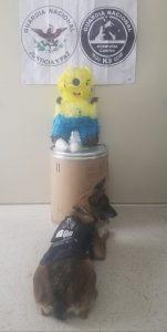 Guardia Nacional localizó un kilo de metanfetamina dentro de una piñata