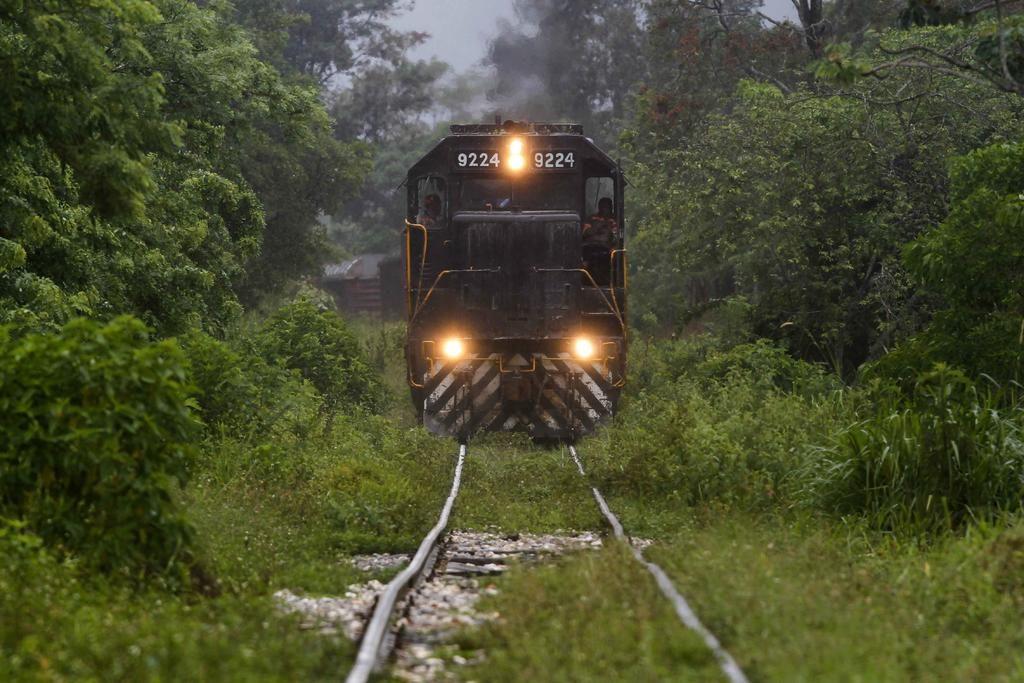 CNDH investigará violaciones a Derechos Humanos en amparo contra Tren Maya