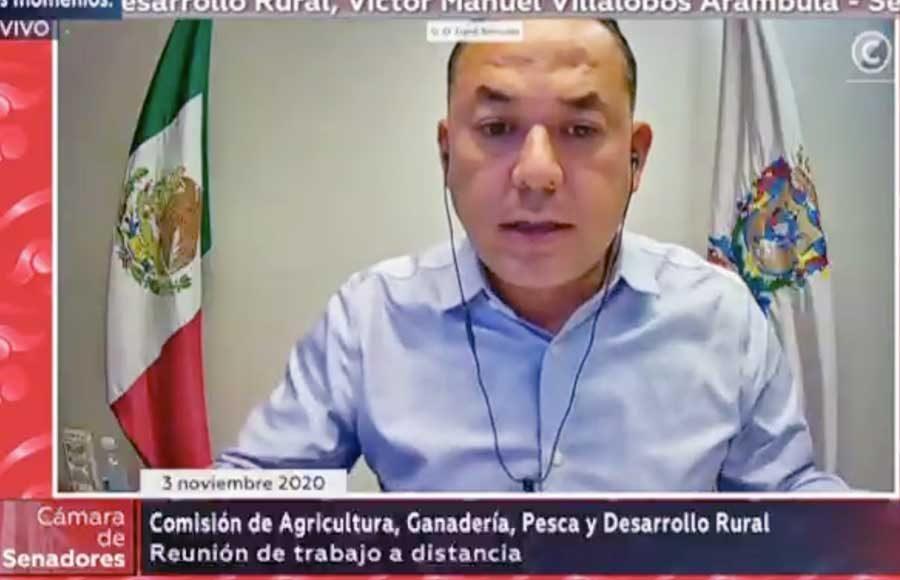 """Opacidad y discreción en la entrega """"directa"""" de recursos para los productores del campo, denuncia Erandi Bermúdez"""