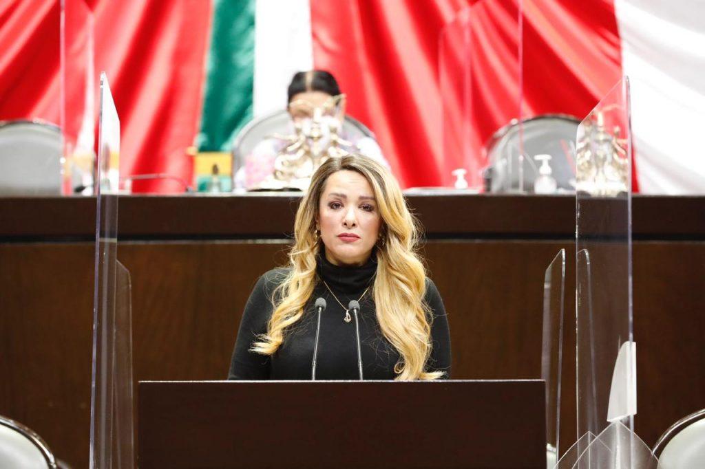 Propone diputada del PT ampliar beneficiarios de personas aseguradas