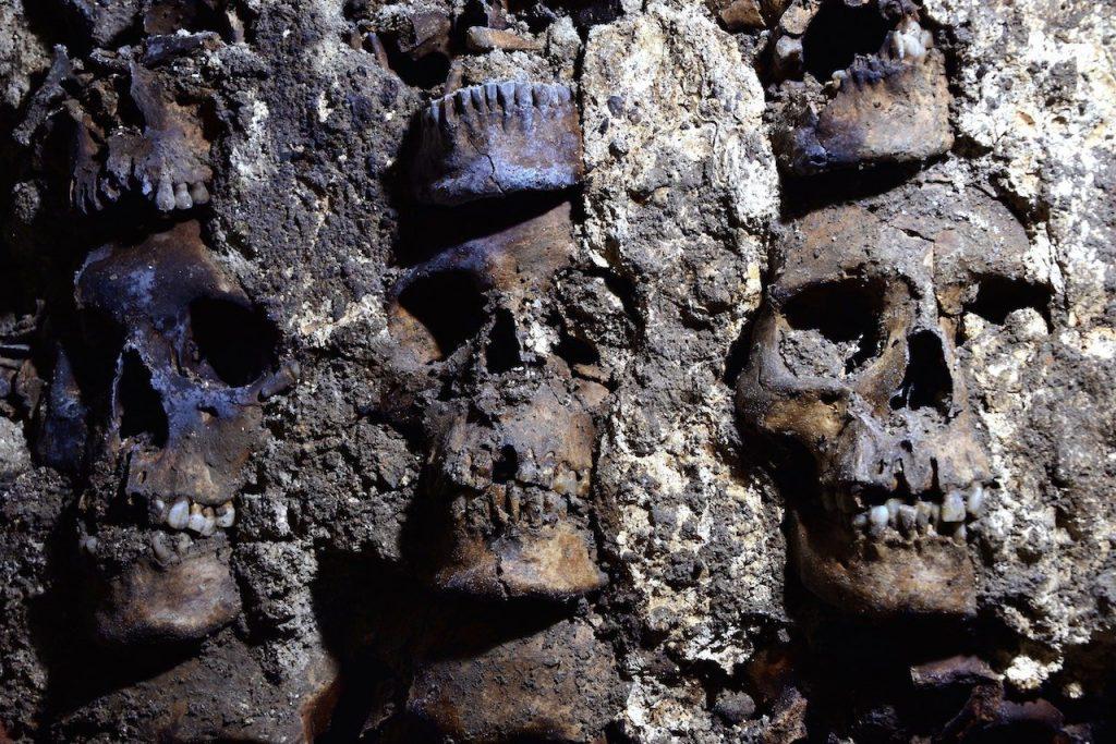 Hallan muro circular de cráneos humanos del Huei Tzompantli de Tenochtitlan