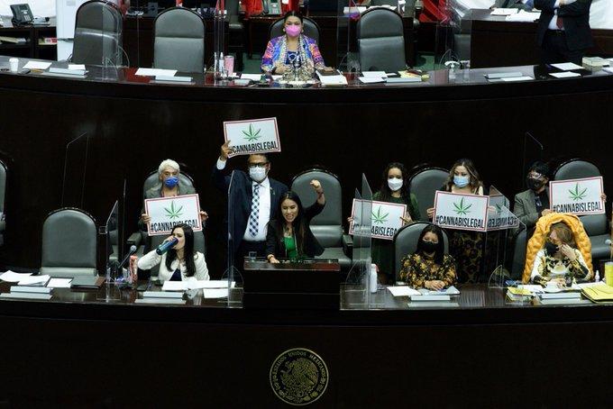 En lo general Diputados despenalizan consumo lúdico, posesión y venta de marihuana