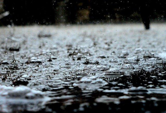 Y llegaron las lluvias