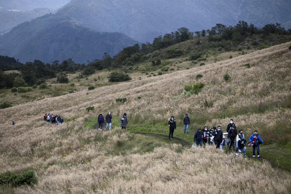 Plantan árboles con cenizas de víctimas de COVID en Colombia