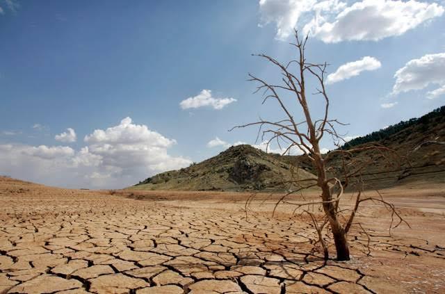 Sequía Foto: Internet