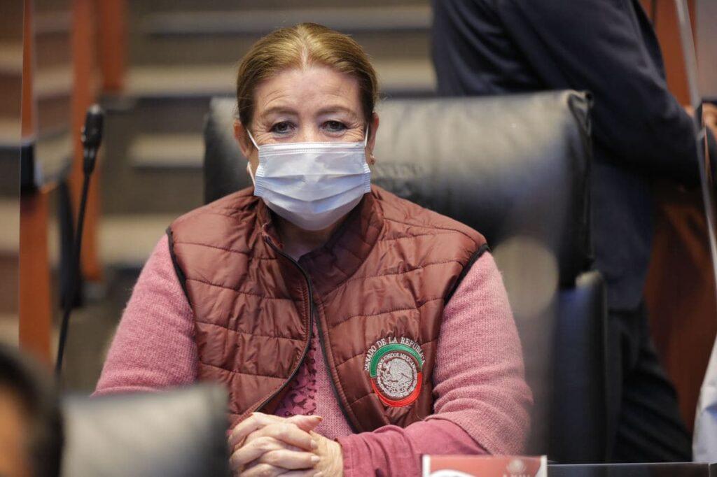 Propone senadora instancia que se responsabilice de por vida de lesionados sin seguridad social Foto: Internet