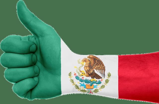 El México Bronco