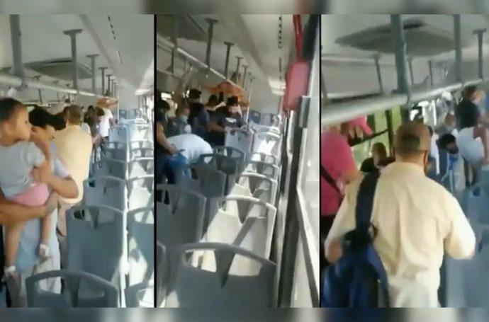 VIDEO I Víbora de cascabel sorprendió a pasajeros de transporte público Foto: Internet