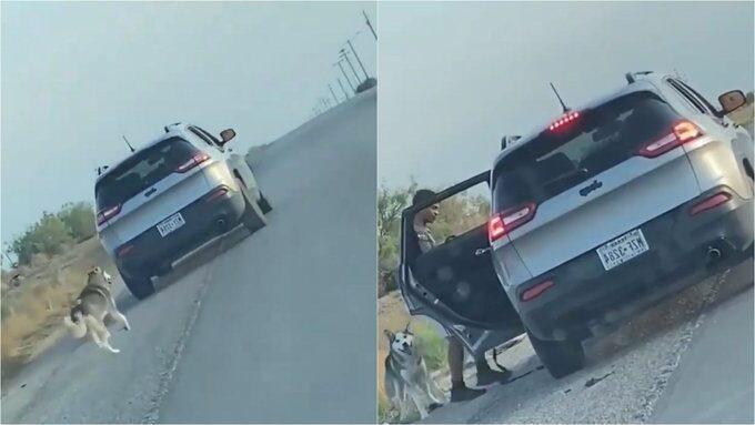 En Texas, sujeto abandonó a perro en plena carretera