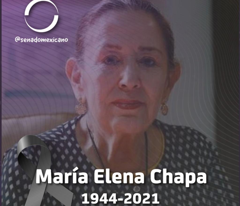 María Elena Chapa Hernández Foto: @senadomexicano