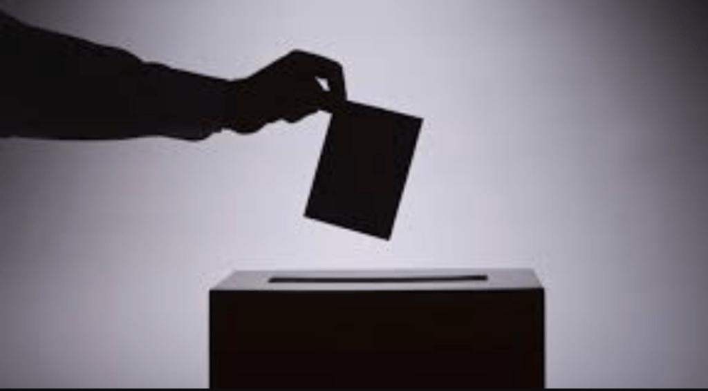 delitos electorales Foto: Internet