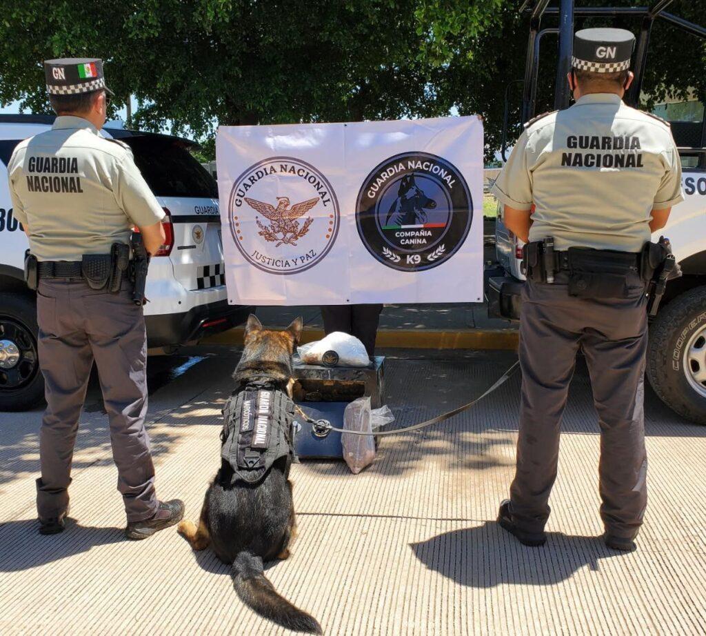 Guardia Nacional aseguró más de 7 kilos de metanfetamina en Culiacán ***FOTOS GN**
