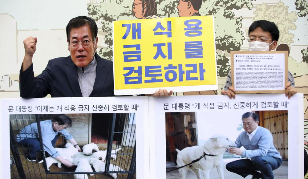 Grupos celebran plan de Seúl sobre consumo de carne de perro