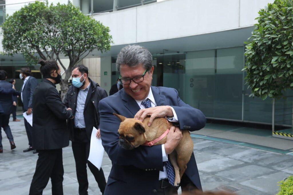 Propone Ricardo Monreal que la protección de los animales convierta en política de Estado
