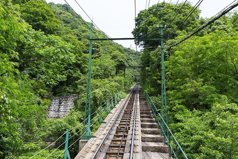 De los 163 mil millones destinados al Tren Maya solo se ha ejercido el 12%, denuncia PAN Foto: Internet