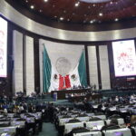 Con goyas, diputados de oposición expresan apoyo a la UNAM ante criticas presidenciales Foto: Internet