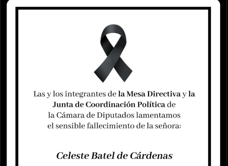 Rinden diputados aplauso y minuto de silencio por muerte de Celeste Batel Foto: @Mx_Diputados