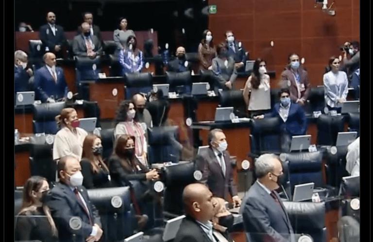 Minuto de silencio en el Senado en memoria de Celeste Batel, Alfredo López Austin y Rodolfo Reyes Cortés Foto: @senadomexicano